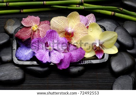 Bowl of Colorful orchid flower with black stones and bamboo grove on mat - stock photo