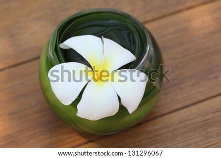 Bowl of Frangipani flowers - stock photo