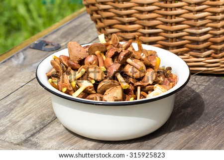 Bowl of fresh forest mushrooms on rustic table - stock photo