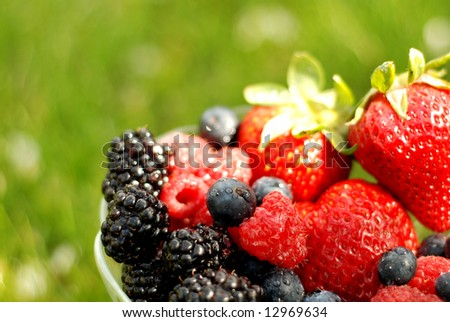 Bowl of mixed berries over a green summer background - stock photo