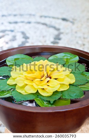 Bowl of water and flowers in a spa with Zen-circles on the floor - stock photo