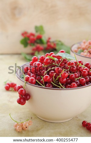 Bowl with fresh red currant and branch of ripe berries on rustic table - stock photo