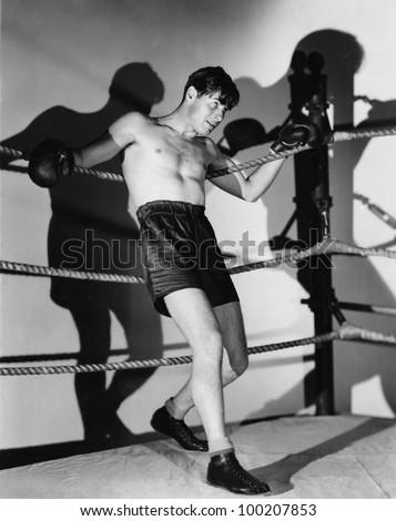Boxer in ring - stock photo