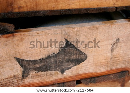 Boxes of fish - stock photo
