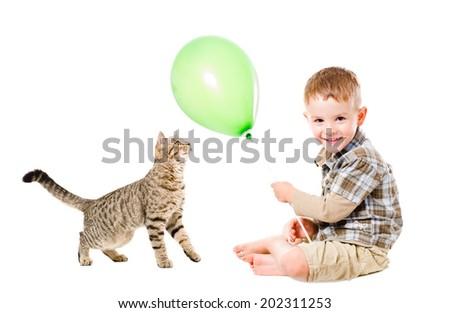Boy and cat Scottish Straight play balloon - stock photo