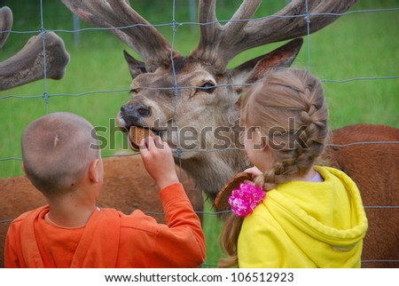 Boy and girl feed an deer - stock photo