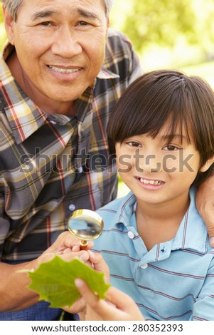 Boy and grandfather examining leaf - stock photo
