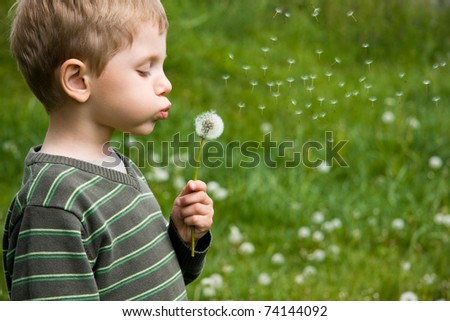 Boy blowing dandelion in summer day - stock photo