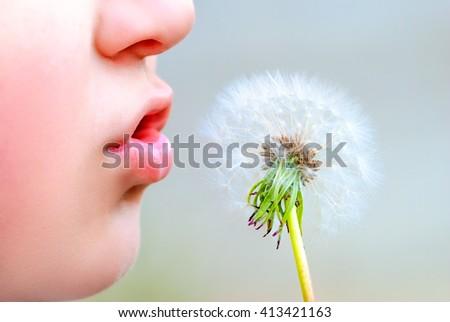 boy blowing on dandelion - stock photo