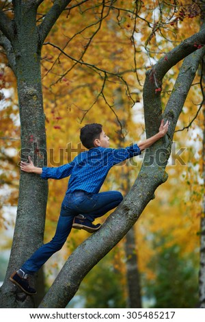 boy climbs up the tree in autumn park - stock photo