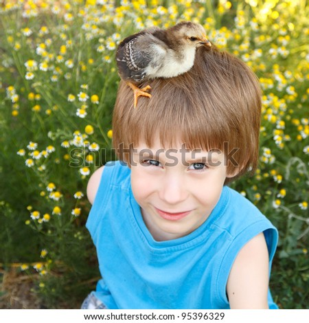 boy cute with chiken on his head nature summer sunny outdoor - stock photo