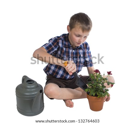 Boy digging a rose bush - stock photo