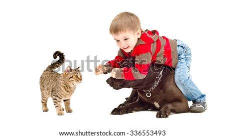 Boy, dog and cat playing together isolated on a white background - stock photo
