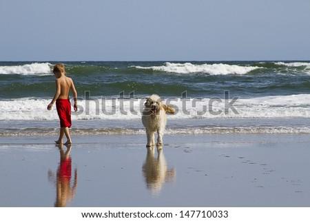 Boy enjoying walking alongside of his dog at beach - stock photo