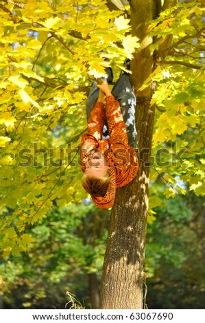 Boy hang on tree in autumn - stock photo