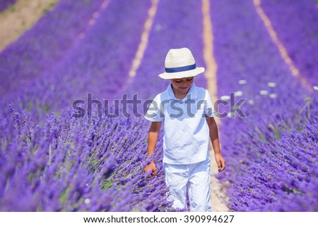 Boy in lavender summer field - stock photo