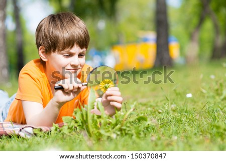 boy in the park with a magnifying glass considers plants - stock photo