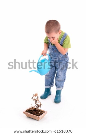 boy looking from dying plant - stock photo