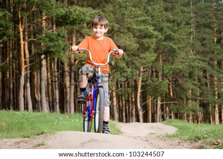 Boy on a bicycle on a background of pine forest - stock photo