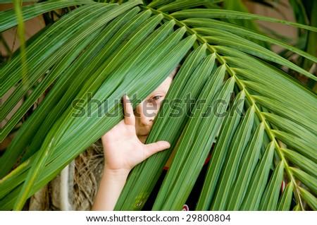 Boy peeking through the leafs - stock photo