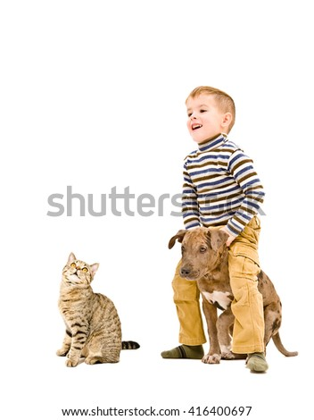 Boy playing with a puppy pitbull and cat isolated on white background - stock photo