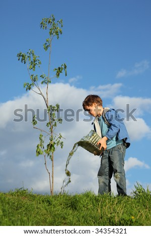 boy pours on seedling of tree by water - stock photo