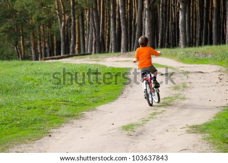 Boy riding a bicycle on the road near the pine forest - stock photo
