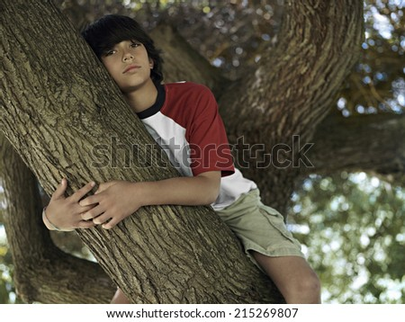 Boy (10-12) sitting in tree in park, close-up, portrait, low angle view - stock photo