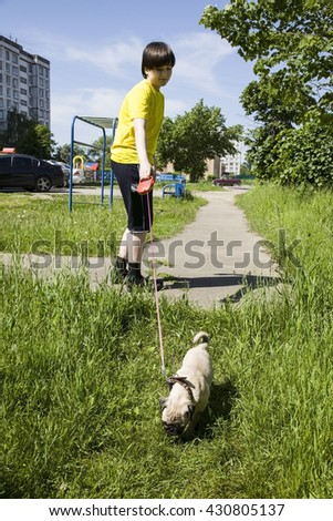 Boy walking with a dog on a summer day - stock photo