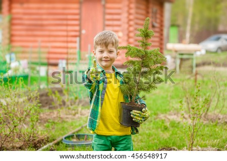 Boy with tree seedling showing thumb up. - stock photo
