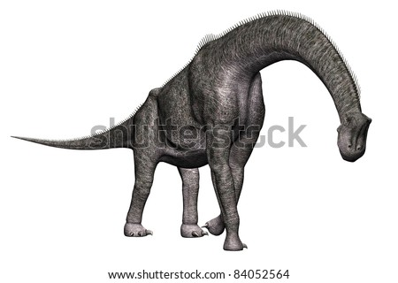 Brachiosaurus  walking  full body view A genus of sauropod dinosaur from the Jurassic Morrison Formation of North America.  Isolated illustration. Clip art cutout - stock photo