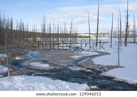 Braided river in Yellowstone National Park - stock photo