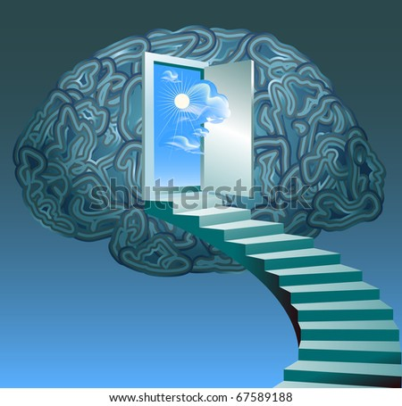 brain - stock photo