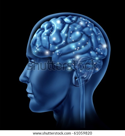 Brain active mental function neurology - stock photo