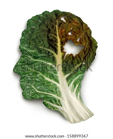Brain decay disease with memory loss due to Dementia and Alzheimer's illness or cancer as a medical symbol of a green kale leaf shaped as a human head and neurons degenerating fading away. - stock photo