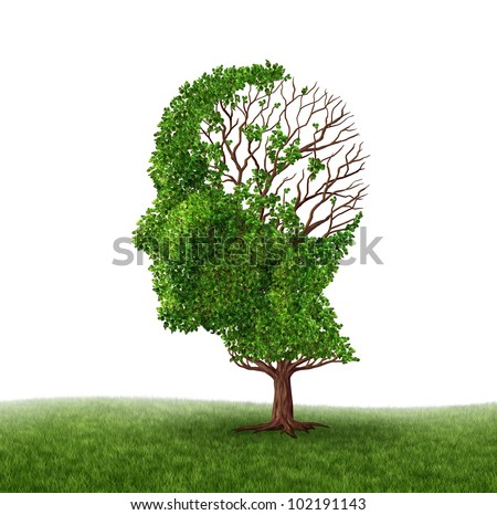 Brain function loss and dealing With dementia and Alzheimer's disease as a medical icon of a tree in the shape of a human head and brain with lost leaves as challenges in intelligence and memory. - stock photo