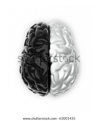 Brain in black and white like Ying and Yang - 3d render - stock photo
