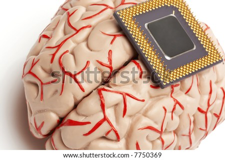 brain model and processor, human and artificial brains - stock photo