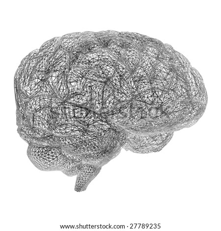 Brain model rendered in wire frame mode - stock photo