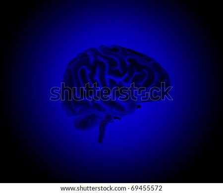 Brain on a Blue Background - stock photo