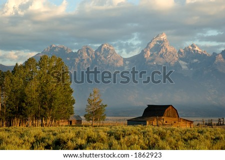 Bran in the grand teton national park, wyoming - stock photo