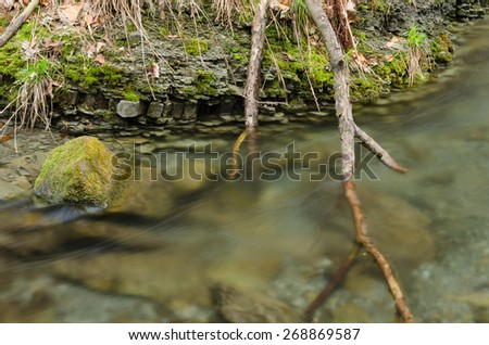 Branch in the water - stock photo
