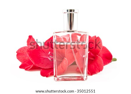 Branch of beautiful flowers and bottle with spirits on a white background - stock photo