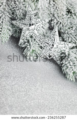 branch of Christmas tree with stars - stock photo