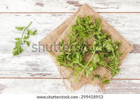 Branch of fresh parsley on white wooden background and linen fabric - stock photo