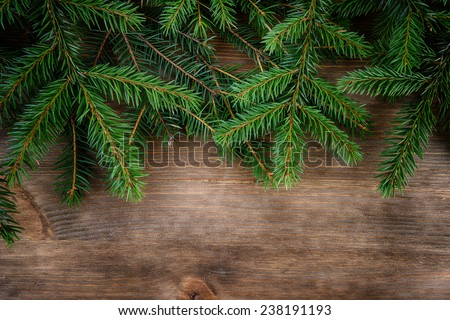 branch of green fir tree on wooden board background - stock photo