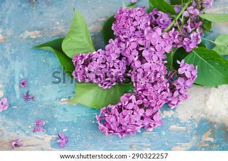 Branch of lilac on a wooden table arrangement, backcloth, backdrop, background, beautiful, beauty, bloom, blooming, blossom, bouquet, branch, bud, closeup, cluster, decoration, floral, flower, foliage - stock photo