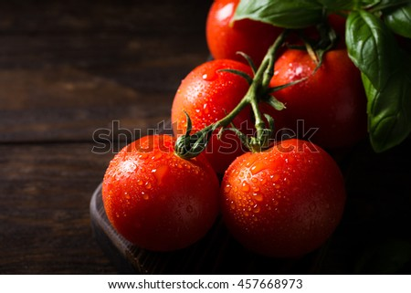 Branch of ripe natural tomatoes and basil leaves on wooden cutting board. Dark photo with copy space. - stock photo