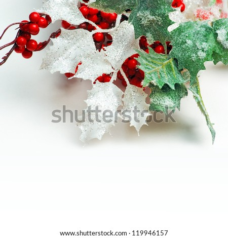 branches of a tree with frost  and red berries isolated on white - stock photo