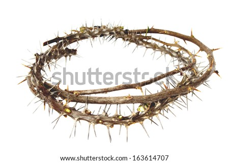 Branches of thorns woven into a crown depicting the crucifixion of Christ on an white background - stock photo